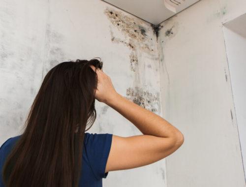 Does Mold Cause Headaches_