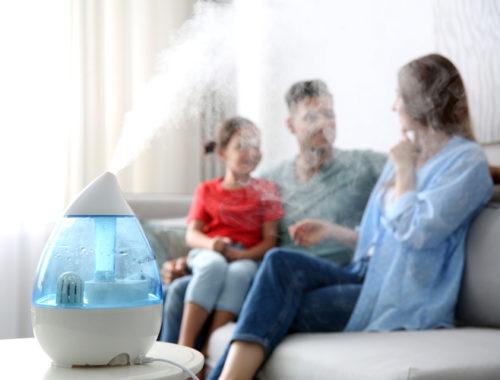 Tips to Correctly Humidify Your House